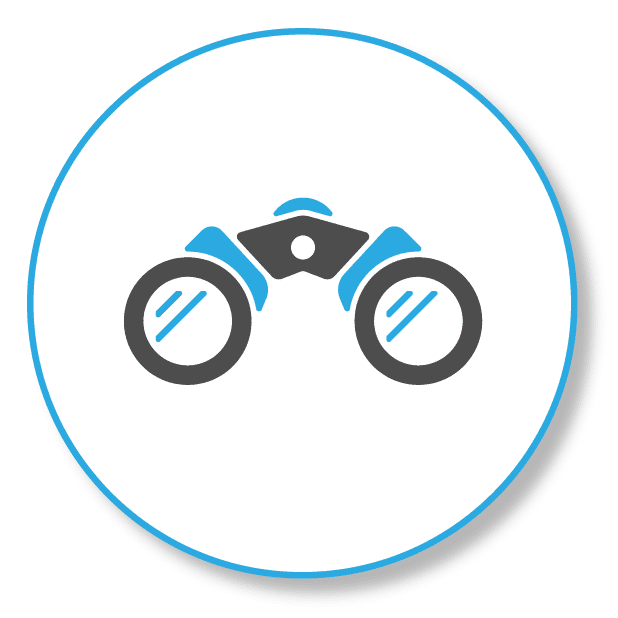 binoculars stands for foresight in SEO projects